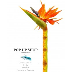 TKNotes x West Elm Pop Up Shop